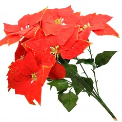 Bouquet Poinsetia rouge...